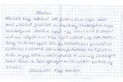Nagy_Zsolt_19